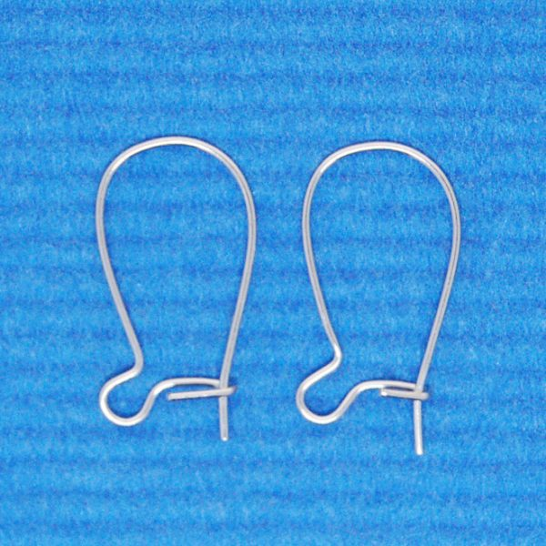 Earring hook | Surgical steel
