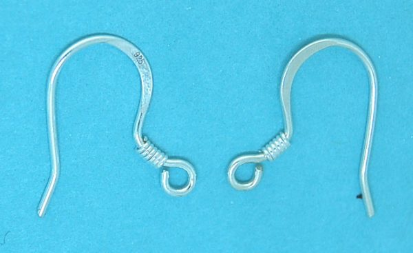 Earwires 52g